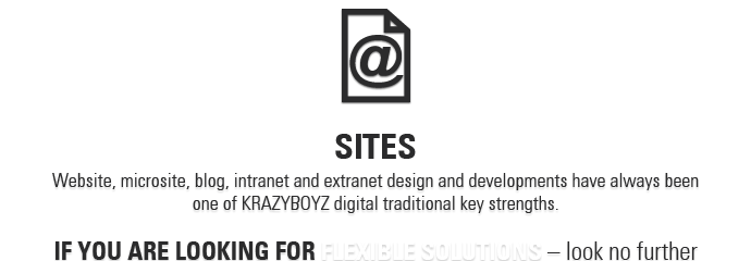 KRAZYBOYZ web sites - if you are looking for flexible solutions - look no further